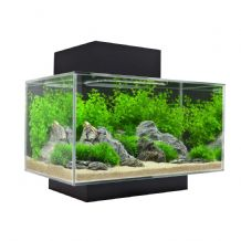 Fluval Edge Fish Tank 23 Litre Black